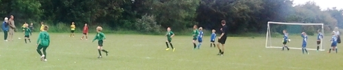 14.6.2014 U9s at Waterside for U9s cup finals day[4]