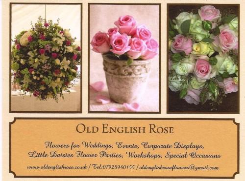 Old English Rose 001