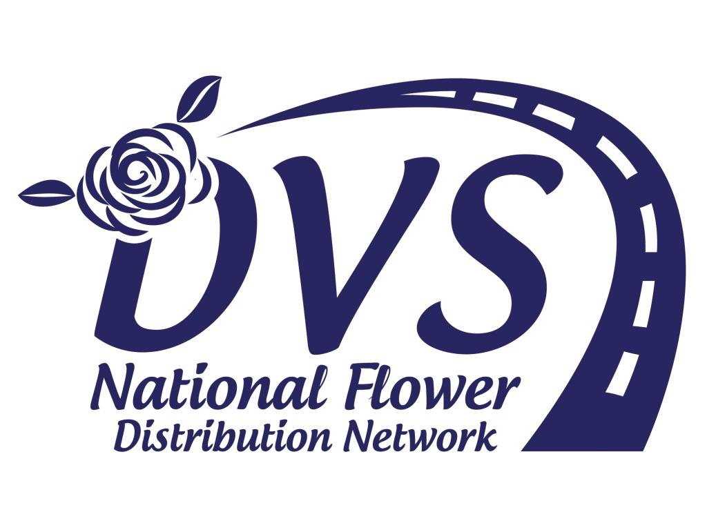 DVS Facebook